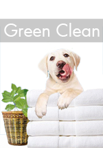 Green-cleaning-banner-150